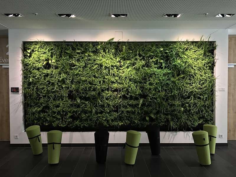 Planten Op Kantoor : Berichten meer groen op kantoor via direct